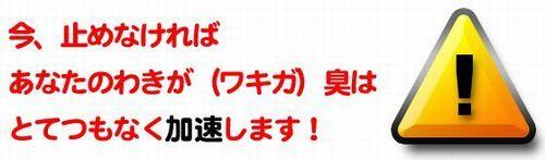 nakamurawakiga2.jpg
